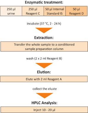 Sample Preparation ortho-Cresol Phenol Urine