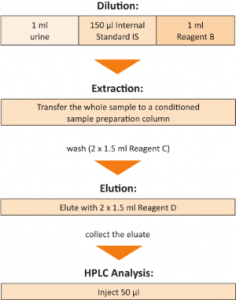 Sample Preparation t,t-Muconic Acid Urine